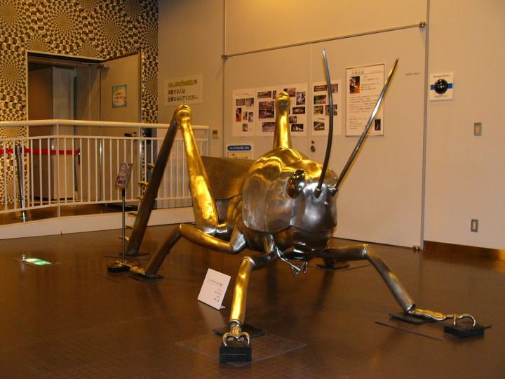 静岡科学館企画展「る・く・る昆虫ワールド」(2007年)