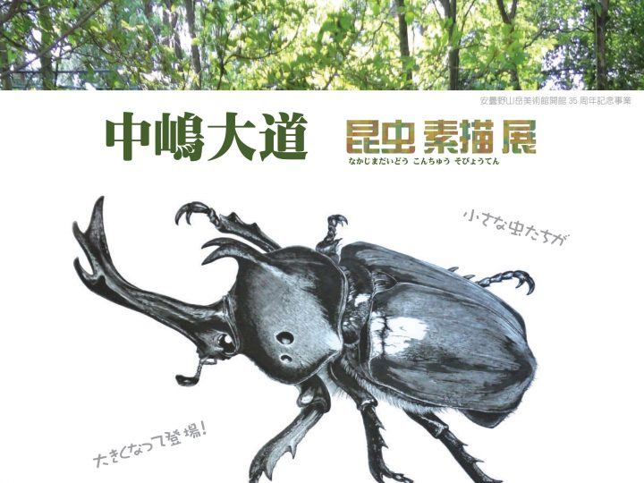 中嶋大道 昆虫素描展