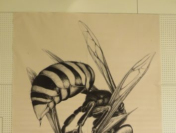 ハチの絵を展示しています
