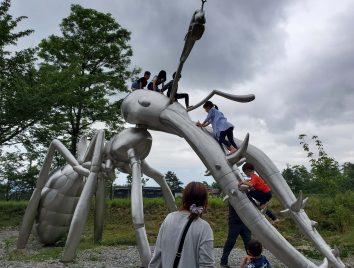 蟻に登った子供たち!!!
